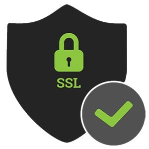Security System (SSL)